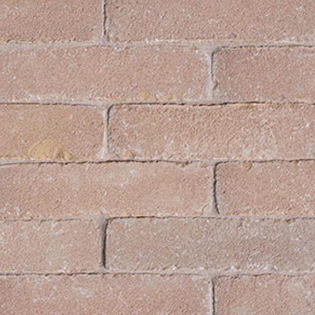 Aureum Clay Main